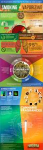 smoking-vs-vaporizing-marijuana
